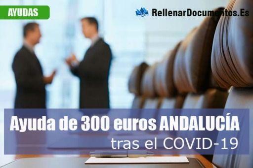 Ayuda de 300 euros