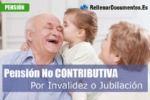 pension por invalidez o jubilacion